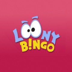Loony Bingo website